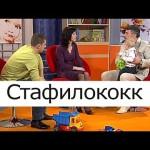 Стафилококк — Школа доктора Комаровского
