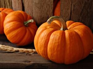 Holidays_Halloween_Big_pumpkins_034999_29