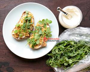 Pea-Shoot-Tartine-3-of-3