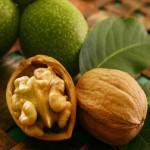 Целебные свойства грецких орехов и блюда из них