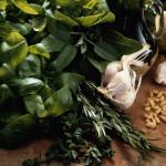 Травы на кухне: десять классических сочетаний