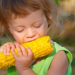 Как правильно выбрать и приготовить кукурузу