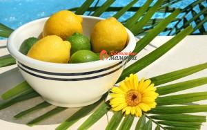 limony_laym_kapli_citrusy_frukty_tarelka_cvetok_1680x1050
