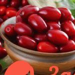 Кизил: уникальные свойства осенней ягоды